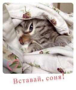 krasivye-4