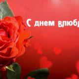 pozdravleniya-na-den-svyatogo-valentina